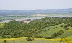 Todas las cuencas andaluzas, salvo el Tinto-Odiel-Piedras, por debajo de la media de la reserva hidráulica en España
