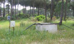 Blanco recuerda que se han cerrado 300 pozos ilegales en el entorno de Doñana