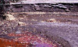 Aprobación del Decreto 18/2015, de suelos contaminados de Andalucía.