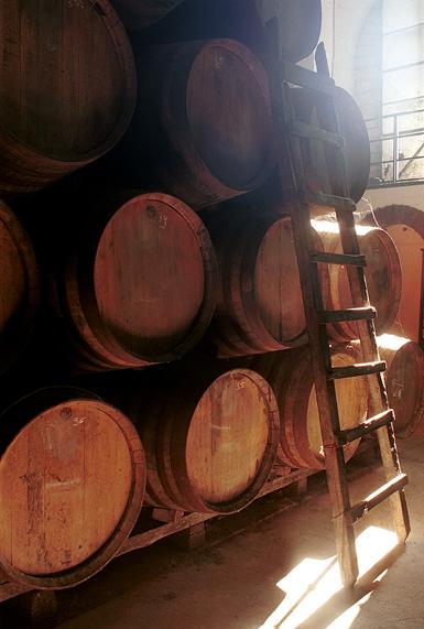 """""""...con maderas de roble buenas y bien tratadas que aporten compuestos de calidad incrementando la complejidad y armonía del vino"""""""