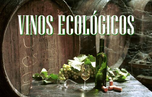 Vinos Ecológicos en Andalucía
