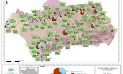 La reserva hidráulica andaluza se encuentra al 40% de su capacidad