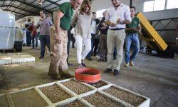 Los viveros de Andalucía preparan la producción de plantas para restaurar la zona afectada por el incendio del entorno de Doñana