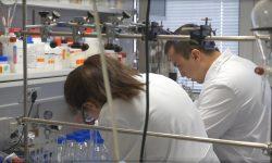 Descubren una bacteria capaz de eliminar metales contaminantes de las aguas residuales