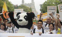 WWF pide mucha más audacia, innovación y acción urgente para ganar al cambio climático