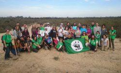 Cientos de voluntarios de WWF plantan árboles en 13 puntos de España en defensa de los bosques