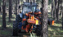 La Junta invertirá 110 millones para la mejora del medio forestal andaluz en los próximos tres años