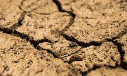 50 millones del proyecto Prima para luchar contra la sequía en el Mediterráneo