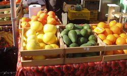 Alimentos ecológicos: nuevas normas para garantizar calidad y apoyar al sector