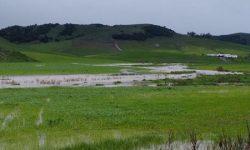 Un marzo de récord acaba con la sequía
