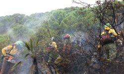 El INFOCA fija en su Comité Asesor las estrategias ante la entrada en vigor de la temporada de alto riesgo de incendios
