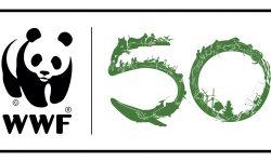 WWF España: 50 años defendiendo la Naturaleza