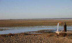 El acuífero de Doñana no sale de la UVI