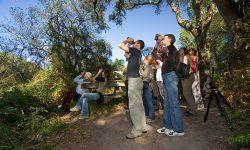 Medio Ambiente convoca ayudas para la realización de proyectos de educación y sensibilización ambiental