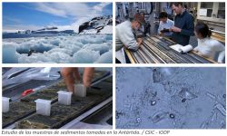 Temperaturas similares a las predichas para este siglo redujeron la capa de hielo de la Antártida en el Pleistoceno