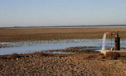 Las organizaciones ecologistas reclaman a Teresa Ribera acciones concretas en defensa de sus guardas y el cierre inmediato de los pozos ilegales de Doñana