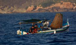 Oceana publica una plataforma interactiva para calcular los beneficios de la pesca sostenible