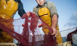 Los países del Mediterráneo alcanzan un acuerdo que impulsa la sostenibilidad de la pesca artesanal