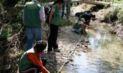 Más de 1.000 voluntarios ambientales evalúan 180 tramos fluviales de Andalucía a través del programa 'Andarríos'
