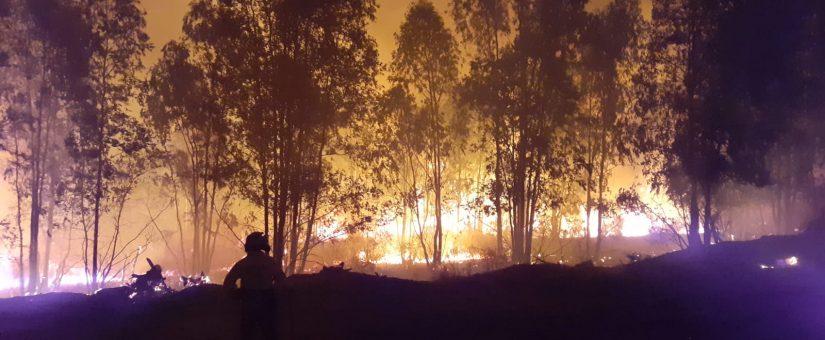 Informe del Plan Infoca sobre el incendio de Almonaster