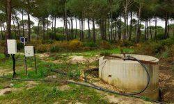 La UE condena a España por destruir Doñana