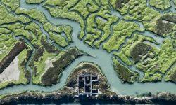 Doñana en la encrucijada