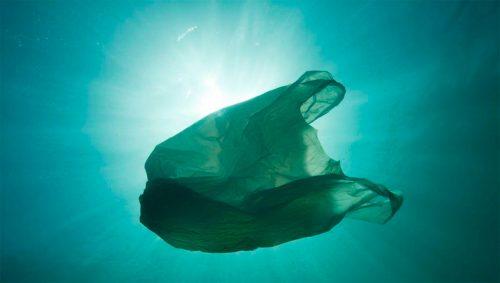 Un nuevo informe de WWF cuantifica el precio real de producir plástico