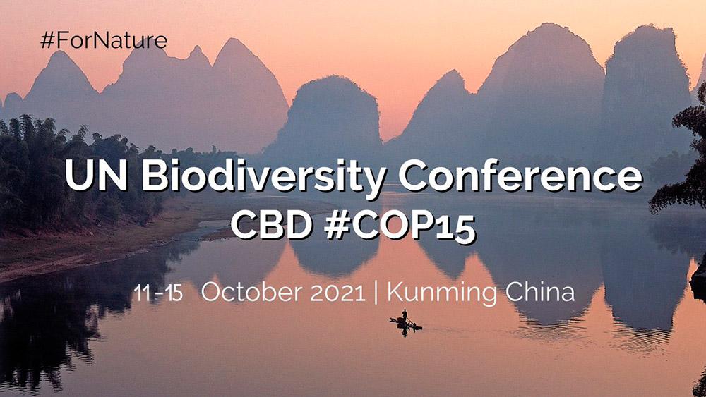 • Del 11 al 15 de ocubre se celebra la COP15 del Convenio de Diversidad Biológica en Kunming (China)
